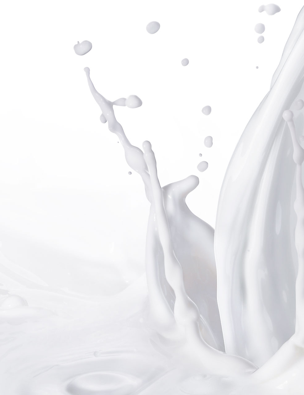 Sabine-Scheer-food-photography-milk-splash