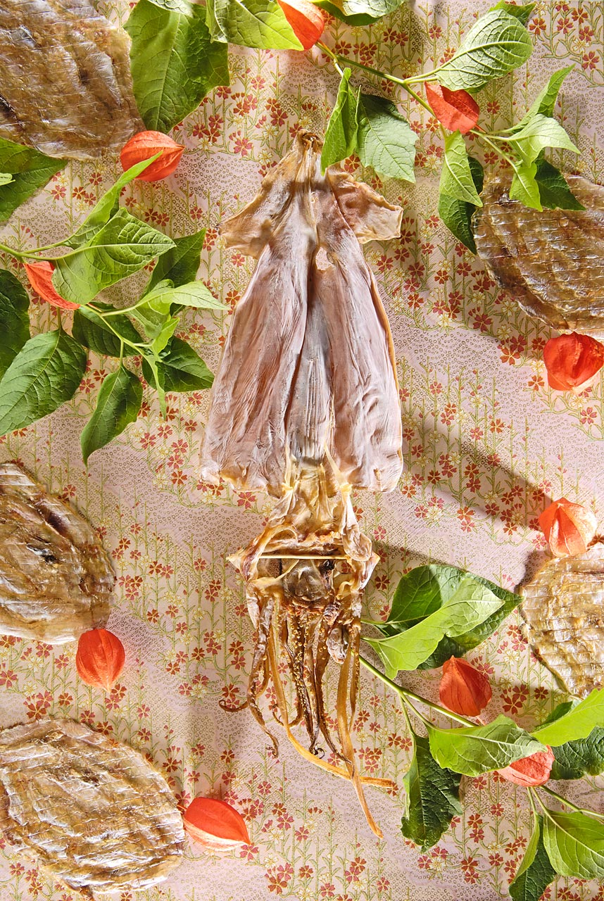 still-life-Sabine-Scheer-dried-squid